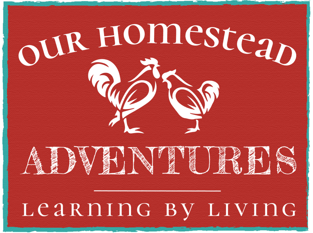 Our Homestead Adventures | Learning By Living