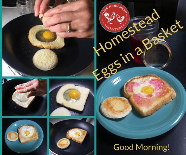 Homestead Eggs in a Basket Breakfast
