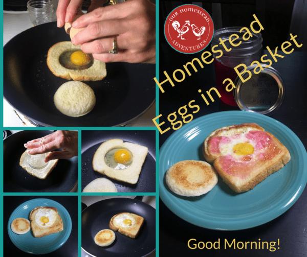 Homestead Eggs in a Basket Breakfast